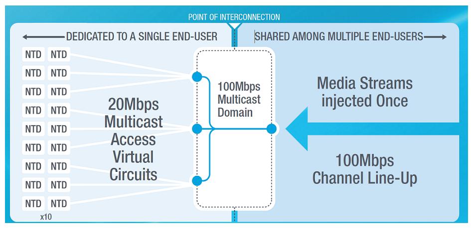 Multicast network design