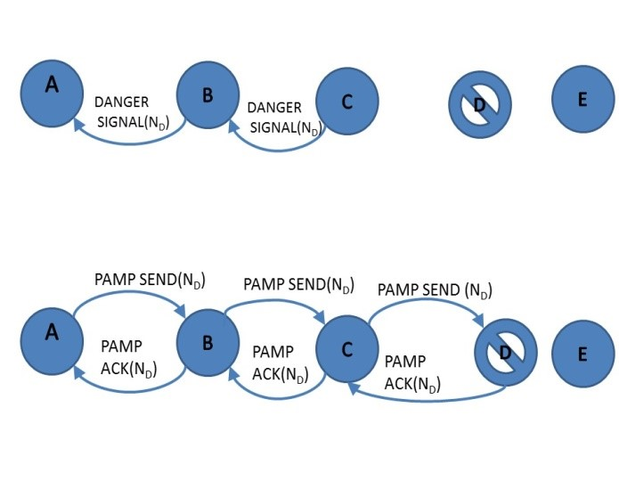 Figure 2. PAMP to confirm attacker